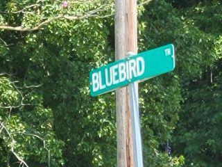 Property in Blounts Creek, NC thumbnail 3
