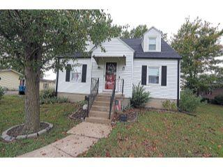 Property in Chaffee, MO thumbnail 4