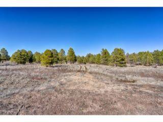 Property in Flagstaff, AZ thumbnail 3