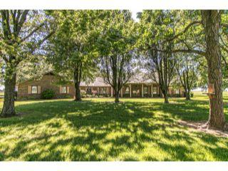 Property in New Madrid, MO 63869 thumbnail 0