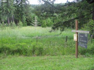 Property in Vernonia, OR thumbnail 2