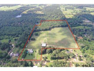 Property in Ben Wheeler, TX 75754 thumbnail 0
