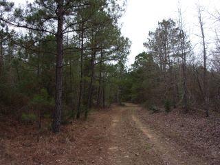 Property in Avinger, TX thumbnail 2