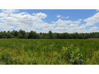 Property in Whitakers, NC thumbnail 1