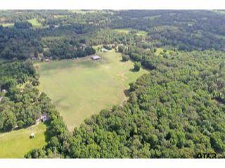 Property in Ben Wheeler, TX 75754 thumbnail 1