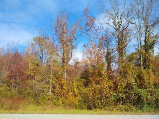Property in Decatur, TN thumbnail 5