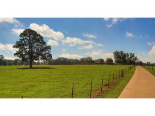 Property in Henderson, TX thumbnail 1