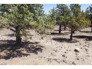 Property in Weed, CA thumbnail 3