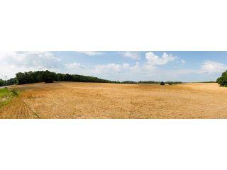 Property in Albemarle, NC thumbnail 4