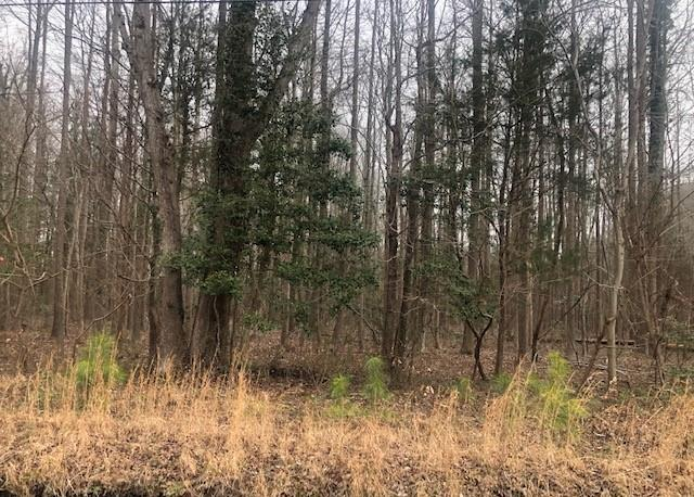 Property Image for 4+ Acres North Bay Haven Drive