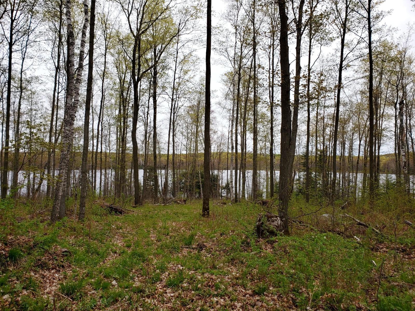 Property Image for 10.8 acres on Deep Hole Lake, Sand Lake Road