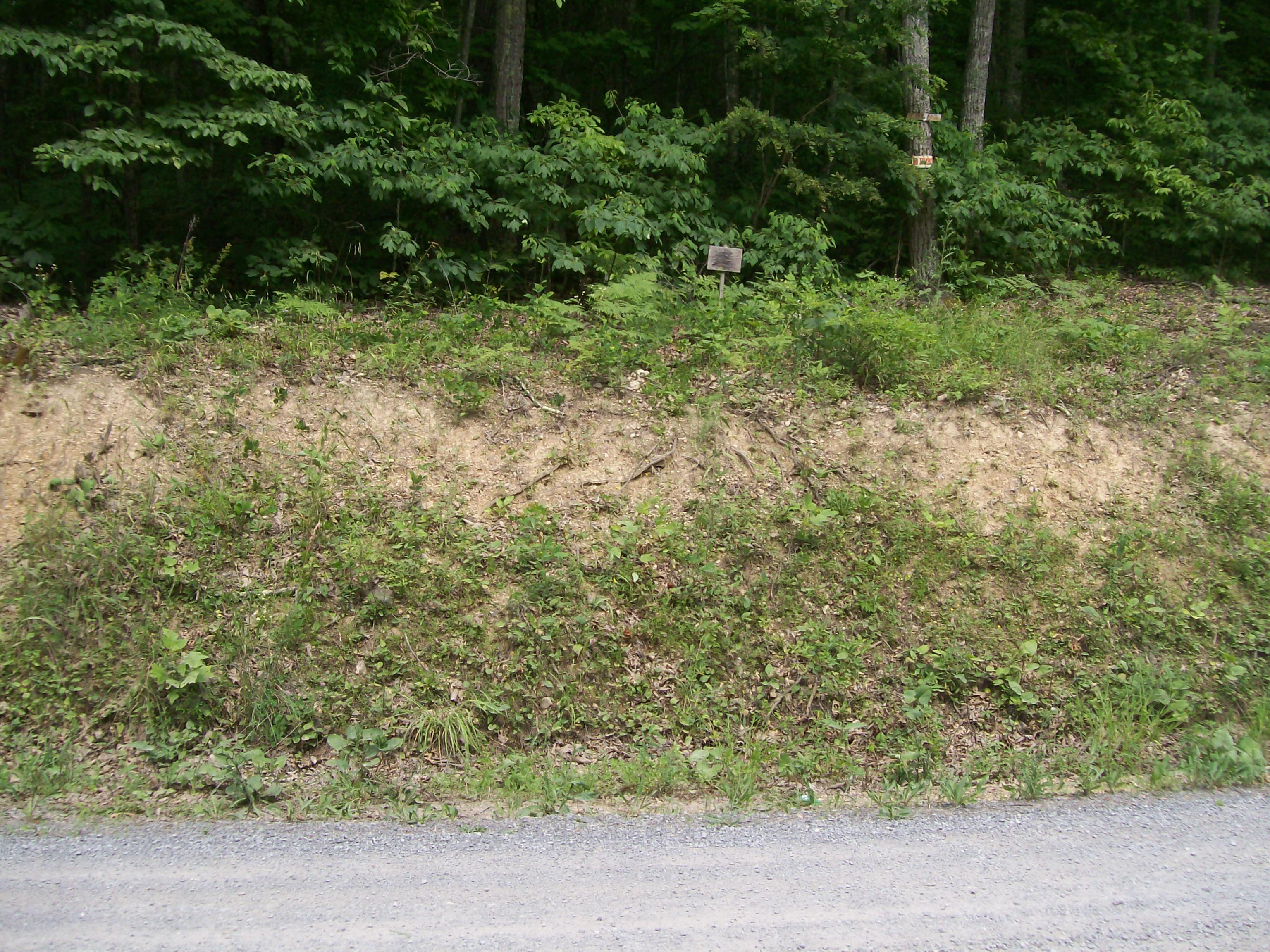 Property Image for Lot 65 Cove Creek Road