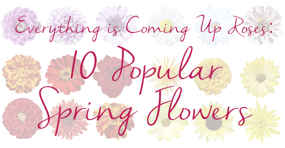 Everything's Coming Up Roses: 10 Popular Spring Flowers image 1