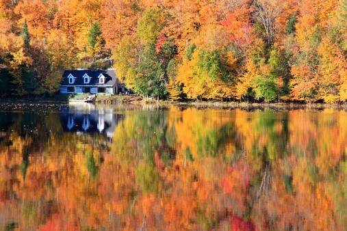 Fall into Fall: 5 Ways to Get Your Home Ready for Fall image 1