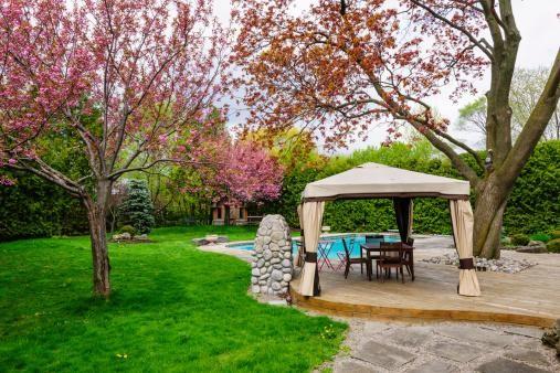 5 Ways to Create A Beautiful Backyard image 1