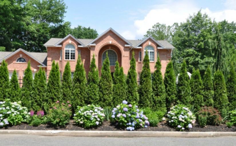 Curb Appeal Tips for the Sellers