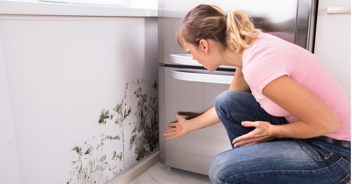 The nose knows: Beware of these smells when viewing homes