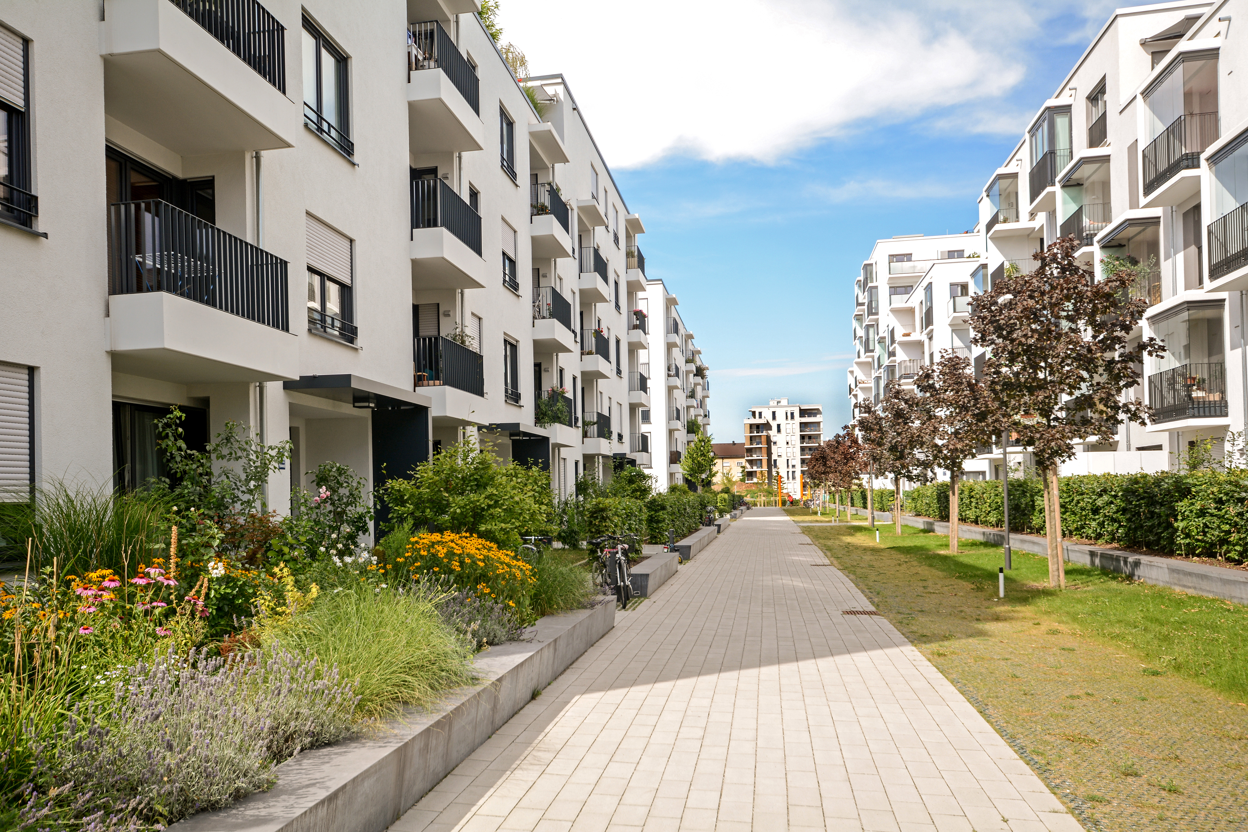 Update on the Multifamily Market